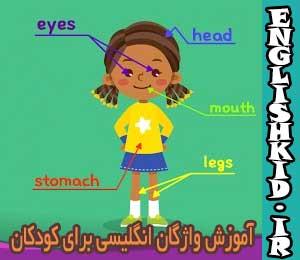 آموزش واژگان انگلیسی برای کودکان